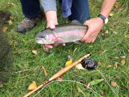 trout on split cane