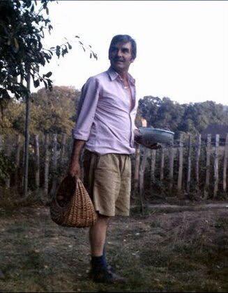 dad fruit picking